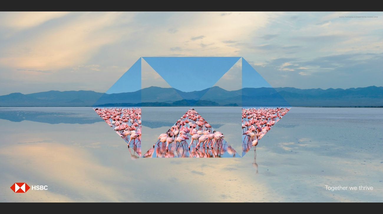 3_HSBC_Thrive-Flamingos